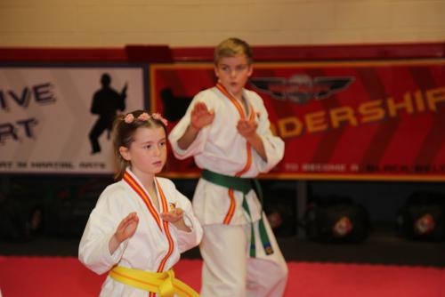 Intermediate and Advanced TKD (Grading)