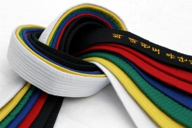 How a Martial Arts Instructor should read the colours of the Belts