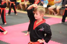 Why young boys need clear boundaries and how Martial Arts can help