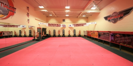 Adult Programmes (Why choose Martial Art World?)
