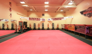 Schools & Corporate Programmes (Why choose Martial Art World?)